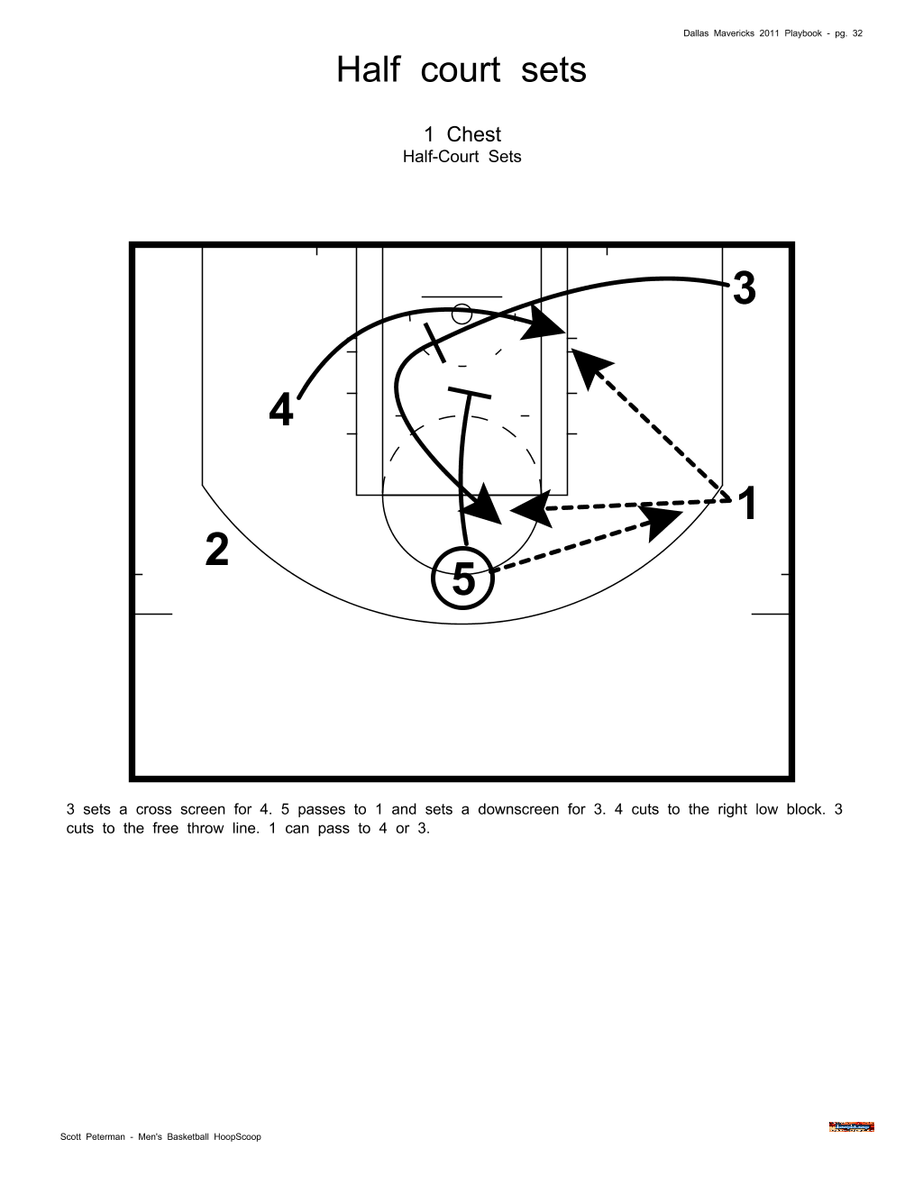 NBA Dallas Mavericks Playbook  4c0652947